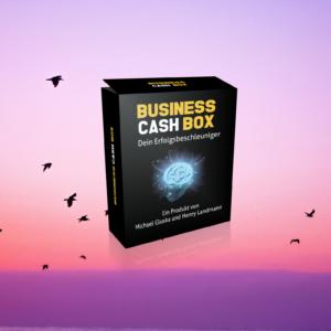 Die Business Cash Box im Review digitalen Infoprodukten