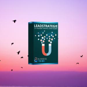 Leadstrategie im Review der digitalen Infoprodukte